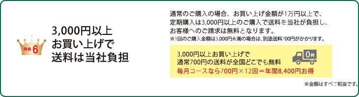 特典6:3,000円以上お買い上げで送料は当社負担 通常のご購入の場合、お買い上げ金額が1万円以上で、定期購入は3,000円以上のご購入で送料を当社が負担し、お客様へのご請求は無料となります。※1回のご購入金額は3,000円未満の場合は、別途送料700円がかかります。